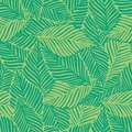 Abstract green jungle print. Exotic plant. Tropical pattern