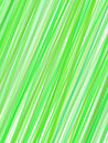 Abstract green lines cover Royalty Free Stock Photos
