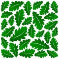 Abstract green oak leaves background Stock Photography