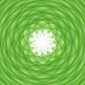Abstract green ornament Royalty Free Stock Photo