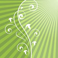 Abstract green rays background with vertical floral dividing element Stock Photography