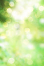 Abstract green spring nature background Stock Image