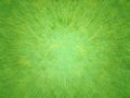 Abstract green texture Stock Photography