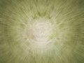 Abstract green texture Royalty Free Stock Images