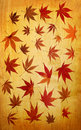 Abstract grunge autumn background with leaves Stock Image
