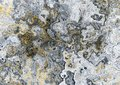 Grunge marble texture Royalty Free Stock Photo