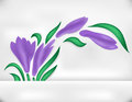 Abstract iris with banner illustration of branch Stock Photos