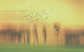 Abstract landscape with trees and birds in yellow and green and orange Royalty Free Stock Photo