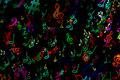 Abstract musical background. in graffiti style. Notes. Music. Fa