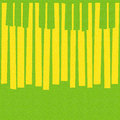 Abstract musical piano keys - seamless background - citrus textu Royalty Free Stock Photo