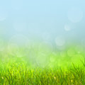 Abstract natural backgrounds Royalty Free Stock Photo