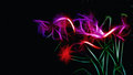 Abstract neon flowers Royalty Free Stock Photo