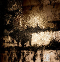 Abstract the old grunge wall for background Stock Image