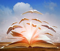 Abstract of open book flying as knowledge wisdom going to future Royalty Free Stock Photo