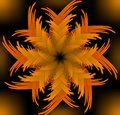 Abstract orange vector jagged flower pattern in fractal style on black background high contrasting decorative tile with d effect Stock Photo