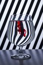 stock image of  Black & white striped red drop