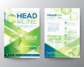 Abstract polygon design vector template layout for magazine brochure flyer Royalty Free Stock Photo