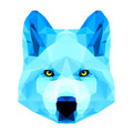 Abstract polygonal geometric triangle bright blue wolf portrait on white background for use in design Royalty Free Stock Image