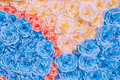 Abstract rainbow Colourful beautiful rose flower Paper background Royalty Free Stock Photo