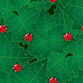 Abstract red bugs background. Royalty Free Stock Photo