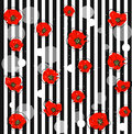 Abstract red poppy flowers Royalty Free Stock Photo