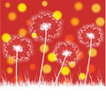Abstract retro illustration with dandelions colorful Stock Photography