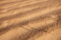 Abstract sand background with sunlight Royalty Free Stock Images