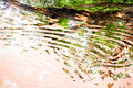 Abstract shadow on water Royalty Free Stock Photo