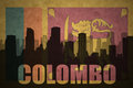 Abstract silhouette of the city with text Colombo at the vintage sri lanka flag