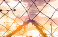 Abstract, Silhouette colorful of goal net soccer in the sunset Royalty Free Stock Photo
