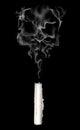 Abstract smoke skull Royalty Free Stock Photo