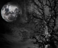 Abstract Spooky Tree and moon Stock Photography