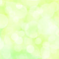 Abstract spring background green with soft lights Stock Images