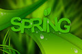Abstract spring background water drops grass Stock Images