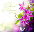 Abstract spring floral background Stock Photography