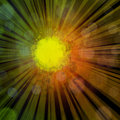 Abstract sun illustration of the with rays and blurry light circles Stock Image