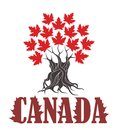Abstract Symbol Canada Royalty Free Stock Photo