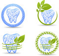 Abstract teeth set tooth illustration collection beautiful design with swirl elements and leafs Royalty Free Stock Photo