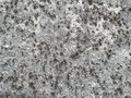 Abstract texture grey and brown detail Royalty Free Stock Images