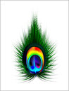 Abstract Vector Peacock Feather