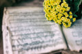 Abstract vintage music background yellow flowers on yellowed music book with worn paper, antique music sheet. Concept of Royalty Free Stock Photo
