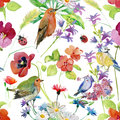Abstract watercolor hand painted background with flowers and birds. Royalty Free Stock Photo