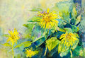 Abstract watercolor original painting  colorful of sun flowers Royalty Free Stock Photo