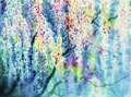 Abstract watercolor wisteria flowers.
