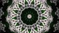 Abstract white flower mandala
