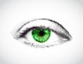 Abstract woman green eye made from dots. Vector Royalty Free Stock Photo