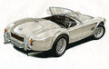 AC Cobra sportscar Royalty Free Stock Photos