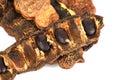 Acacia concinna pods x soap pods x medicinal herbs Royalty Free Stock Photography