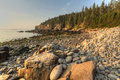 Acadia boulder beach sunrise rounded stones nestled in larger rocks on looking toward the otter cliffs at in national park maine Royalty Free Stock Photos