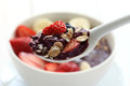 "Acai bowl ""acai bowl"" are popular in brazil hawaii and baja california Royalty Free Stock Photos"